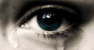 Se Domus piange, Casabella non ride